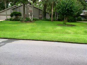 Mowed yard in TPC Sawgrass, FL
