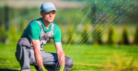 Premium Lawn Services In Jacksonville Fl By Pyramid Free