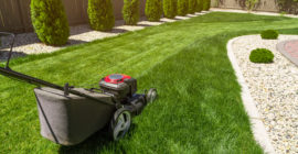 Mowing a backyard in Jacksonville Beach, FL