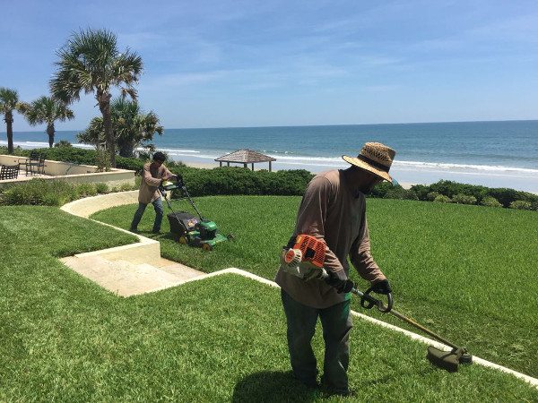two person doing lawn maintenance