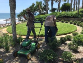 a couple of workers doing landscape maintenance