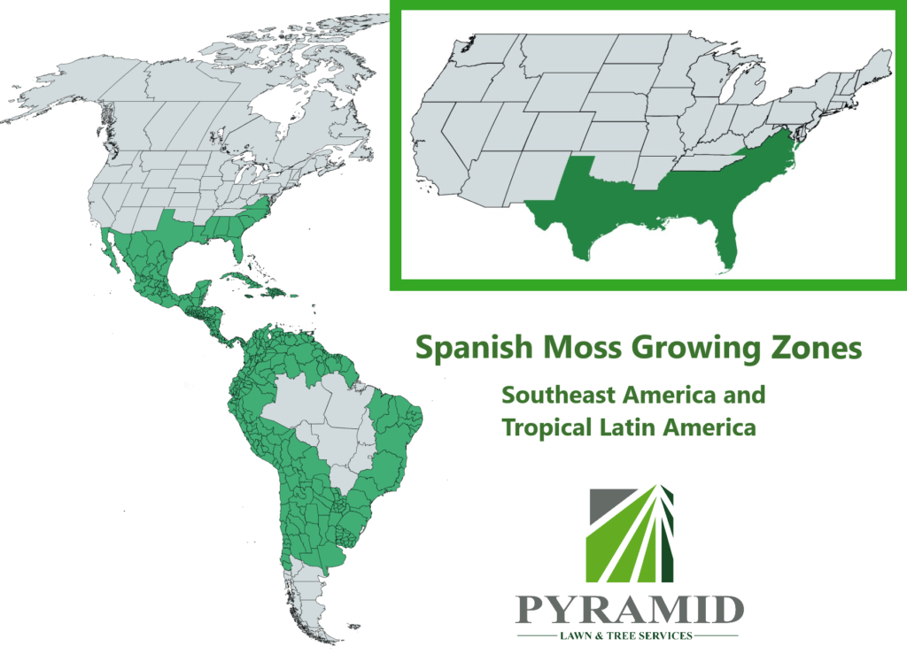 Spanish moss growing zones map